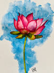 A Red Lotus Blossom