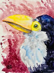 A Baby Toucan (Resubmission)