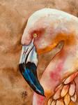 Portrait of a Flamingo #2