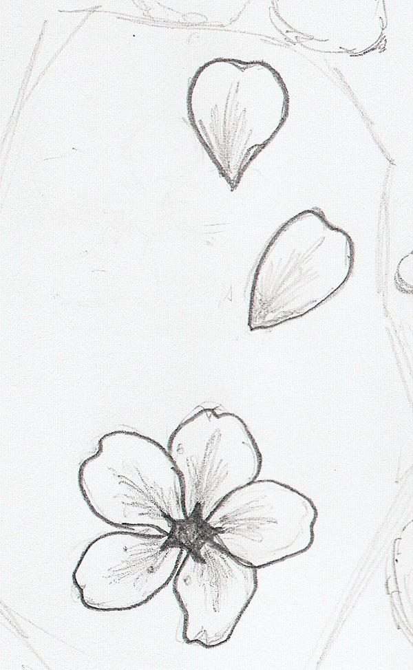 Flower Petals Line Drawing : Tattoo sketch by moongoddessofcutlery on deviantart