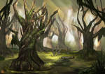 Teran Forest