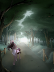 Commission - Morning Walk