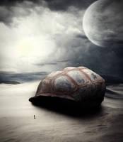 Giant tortoise shelter