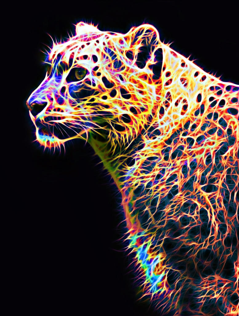 Colored Leopard IV by megaossa