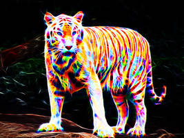 Colorful tiger IV by megaossa