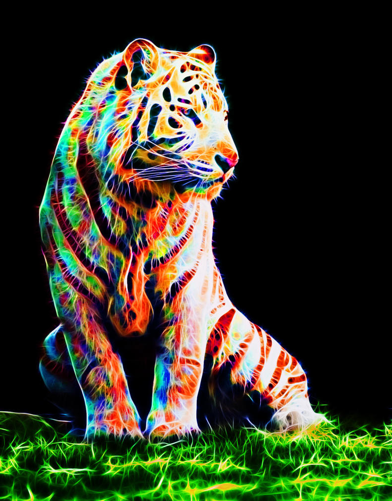 Colorful tiger VI by megaossa on DeviantArt