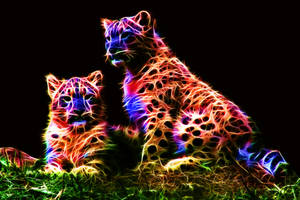 Colored Leopards