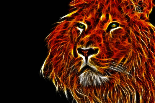 Fractalius HDR Lion III