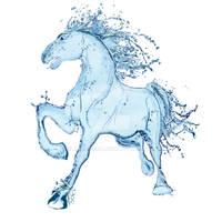 Water horse III