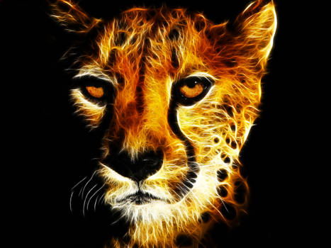Fractalius Cheetah Face