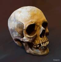 Spooky Scary Skull by Tom-Cii