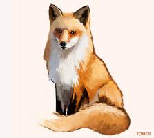 Fox 2 by Tom-Cii