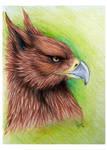 Griffin by wolf-minori