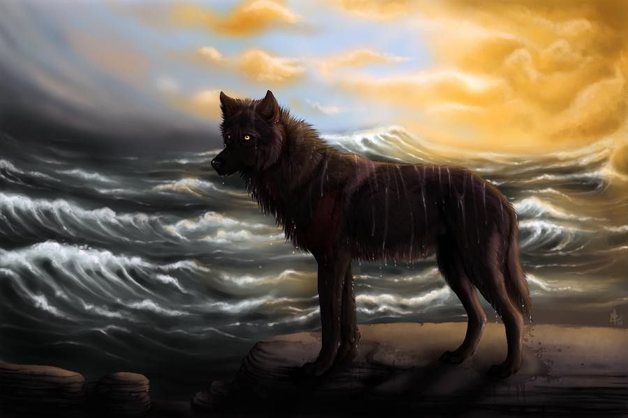 Perfil de Akishar Sea_wolf_by_wolf_minori-d33rv16