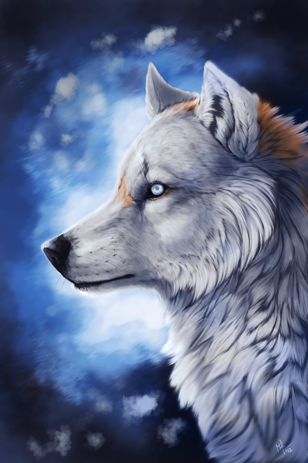 """Résultat de recherche d'images pour """"deviantart wolf"""""""