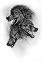 Brothers of Doom by wolf-minori