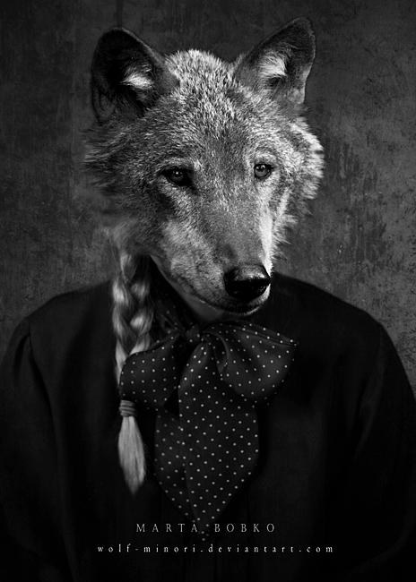 wolf-minori's Profile Picture