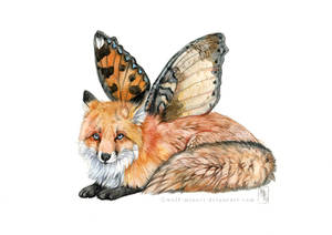 FlyFox