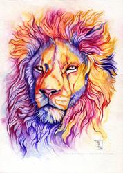 Color Pride