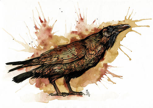 Coffee and Ink Raven