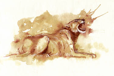 Coffee and Ink Lioness