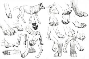 Paws frenzy by wolf-minori