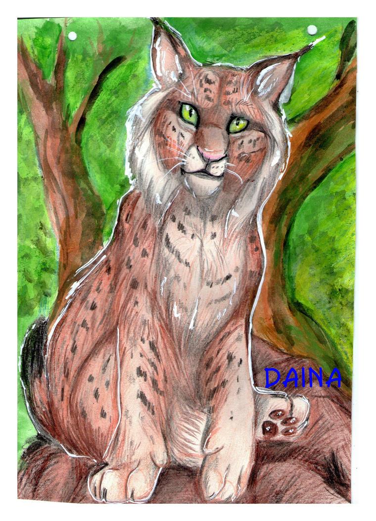 iberian lynx by TigresaDaina