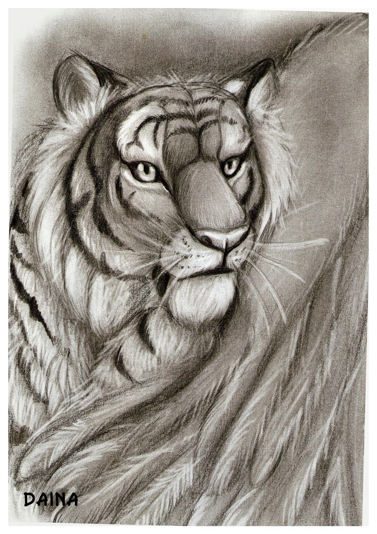 Winged Tigress by TigresaDaina