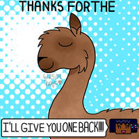 Thanks For The Llama by HolyGoldenCarter