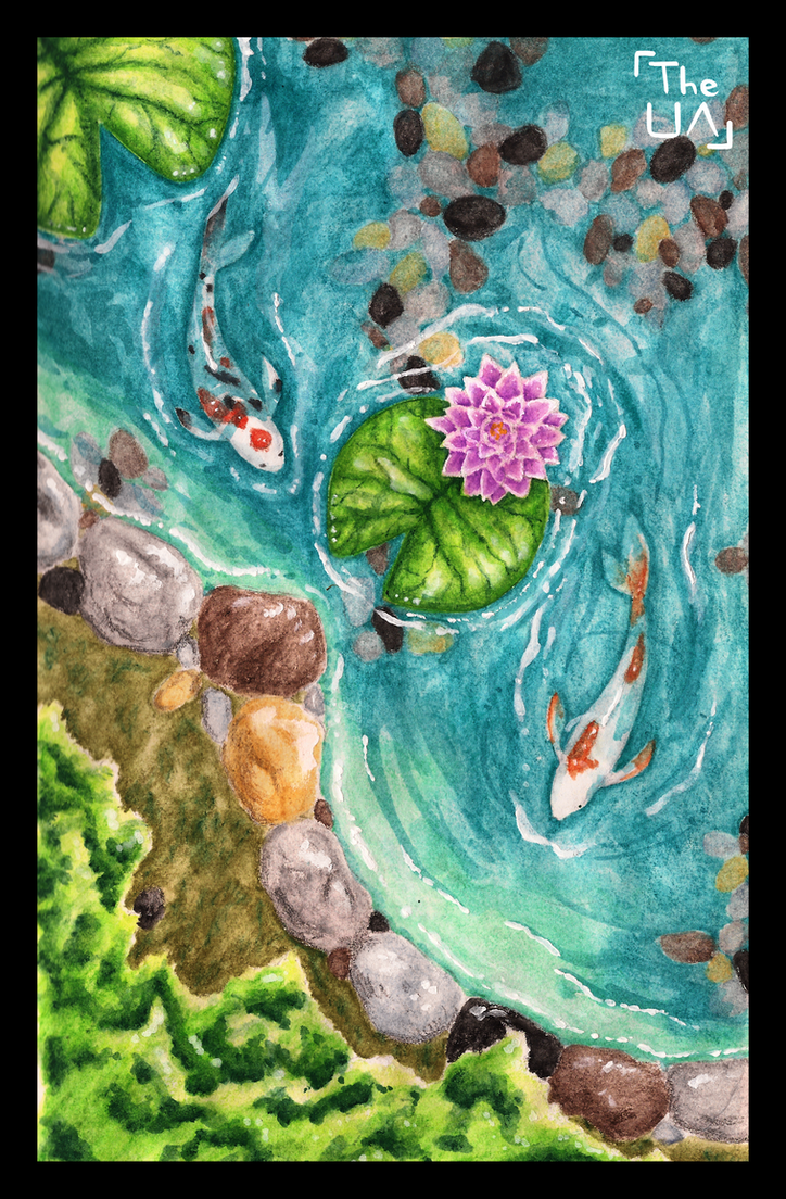 Koi pond by theunconfidentartist on deviantart for Koi fish pond drawing