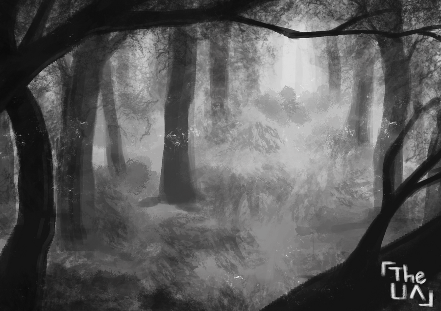 Foggy Forest by TheUnconfidentArtist
