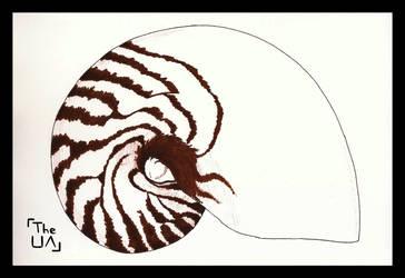 Nautilus (Inktober, Day 11)
