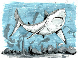 YamaCon 2016 Sketches: Great White Shark by Shono