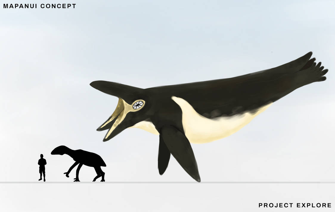 Weird Whale by EbonCreator