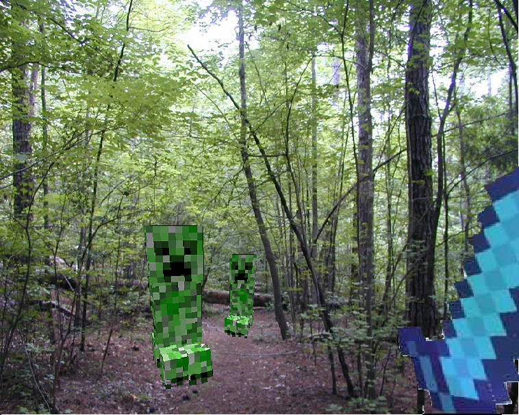 Creeper in real life - photo#12