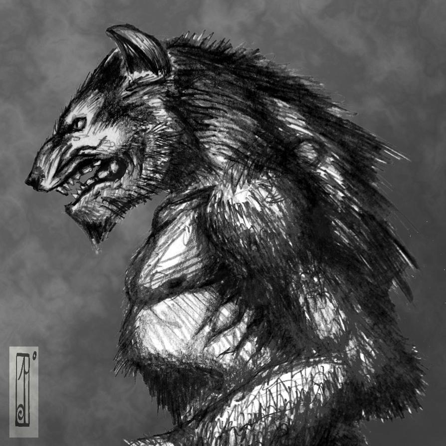 Werewolf sketch by Entenn on DeviantArt