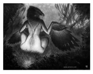 Ladybird by Entenn