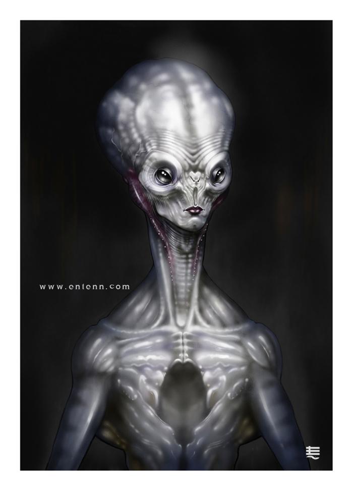The Grey by Entenn