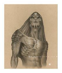 Aquasyn sketch