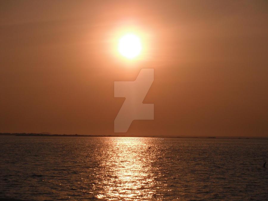 Twilight's blazing first hope by GuardianofLightAura