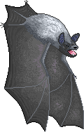 Silverhaired Bat Request by Ozkumeti