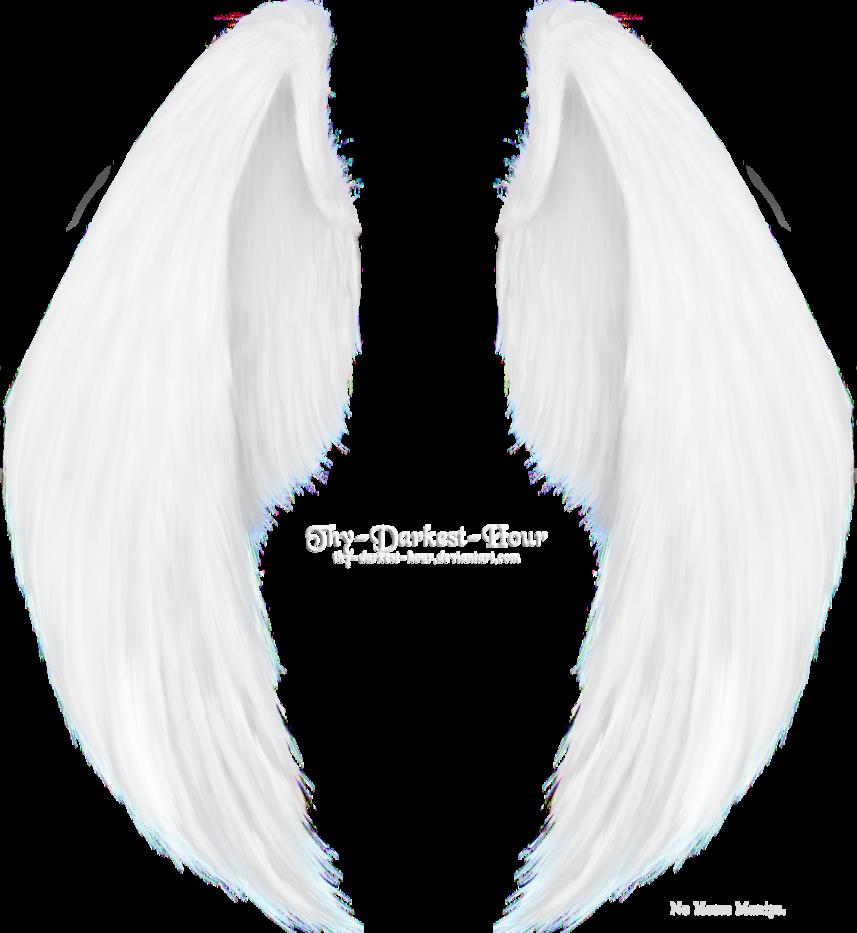 alas png by angelarominarivas