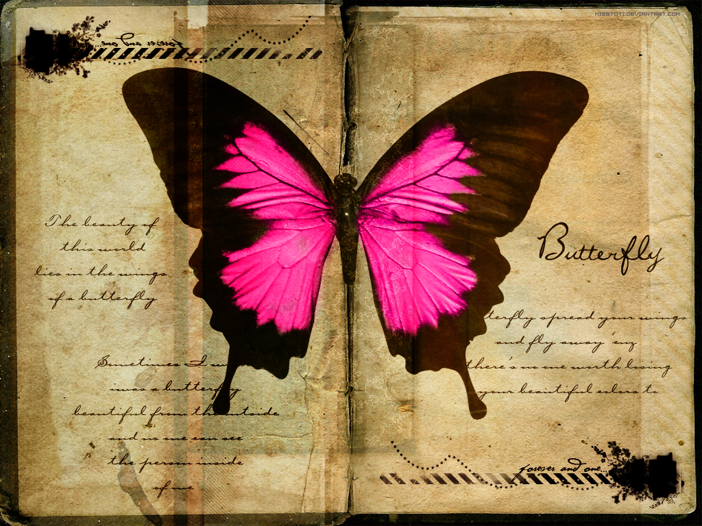 خلفيات فراشات جامده Butterfly_Wallpaper_by_MisSToTi
