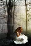 Confessions Of A Broken Heart