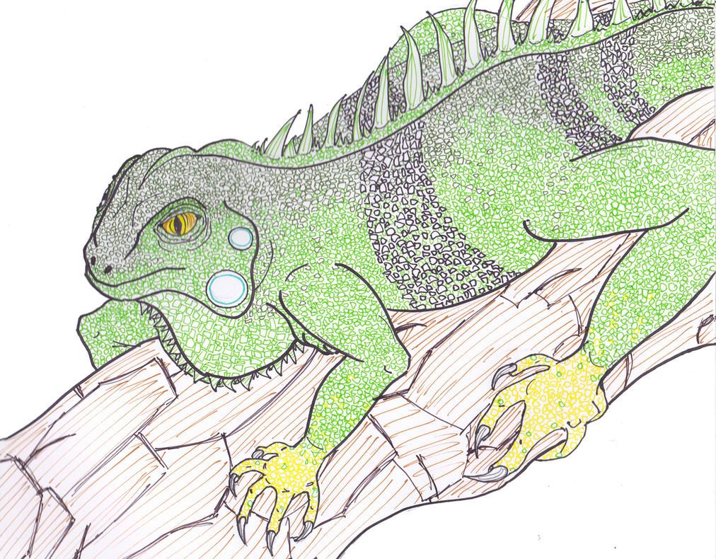 Iguana Iguana by Minty-MANZANA
