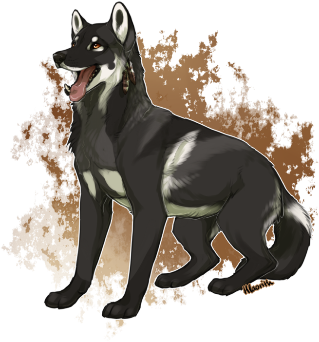 Good Names For Black Wolf Dogs