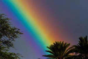Hawaiian Colours by jbrum