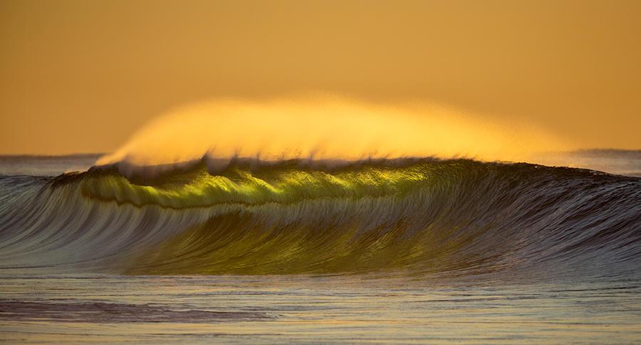 Golden Glow by jbrum