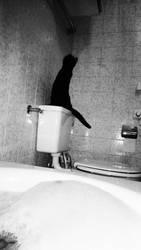 Black Cat On Bath