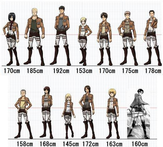 Anime Characters 175 Cm : Shingeki no kyojin height measurement by sushi love on